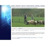 Pierre Oteiza au Journal du JT sur France 3